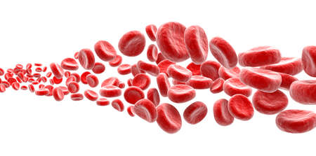 Blood cells on white background