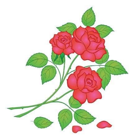 Illustration pour Flowers, rose bouquet, love symbol, floral gift.  - image libre de droit