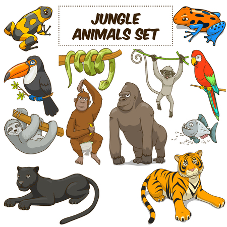Illustration for Cartoon funny jungle animals colorful set vector illustration - Royalty Free Image