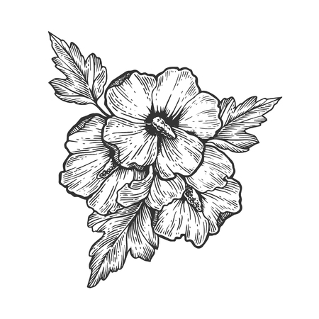 Illustration for Hibiscus flower engraving vector illustration - Royalty Free Image