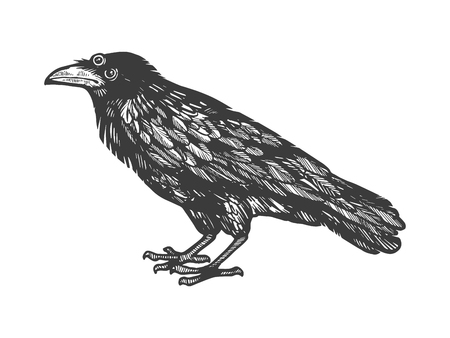 Illustration pour Crow with three eyes sketch engraving vector illustration. Scratch board style imitation. Hand drawn image. - image libre de droit