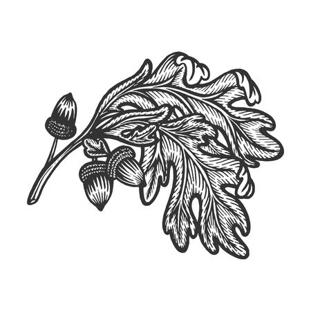 Illustration pour Oak branch with acorns sketch engraving vector illustration. Scratch board style imitation. Hand drawn image. - image libre de droit