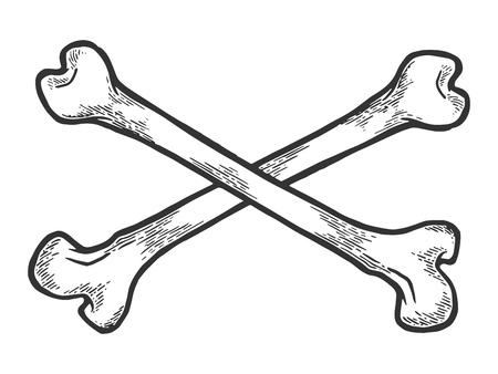 Illustration pour Crossed bones. Pirate symbol sketch engraving vector illustration. Scratch board style imitation. Hand drawn image. - image libre de droit