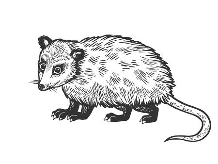 Illustration pour Opossum animal sketch engraving vector illustration. Scratch board style imitation. Black and white hand drawn image. - image libre de droit