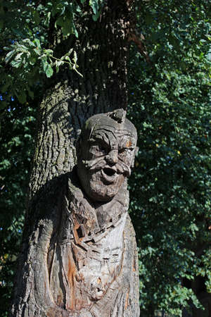 The figure carved on a tree