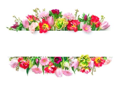 Photo for Colorful spring flowers isolated on white. Top view with copy space - Royalty Free Image