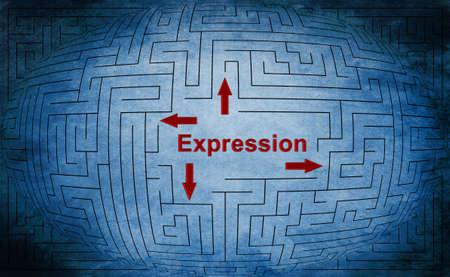 Expression maze concept