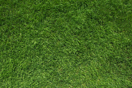 Foto de Texture of green grass top view green lawn - Imagen libre de derechos