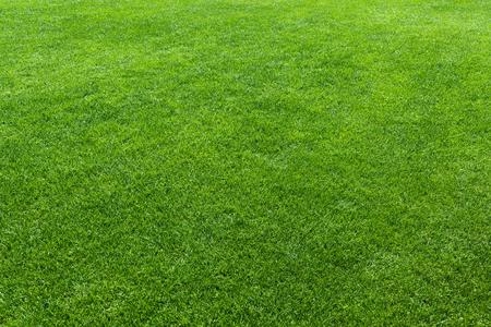 Foto de Green lawn, background of a green grass - Imagen libre de derechos