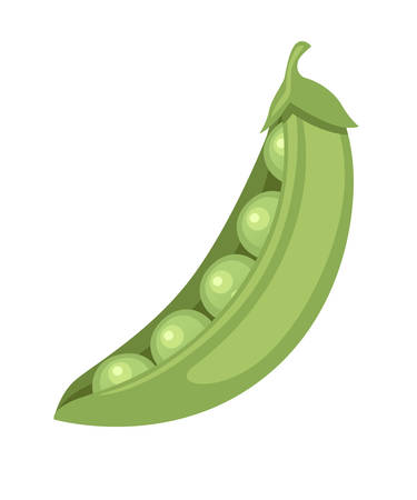 Ilustración de Green peas in pod fresh food flat vector illustration isolated on white background. - Imagen libre de derechos