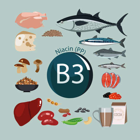 Illustration pour Vitamin B3 (PP). Foods with the maximum vitamin content. Basics of dietary nutrition - image libre de droit