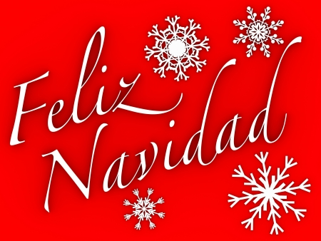 Feliz navidad. Words and snowflakes in white over a red background