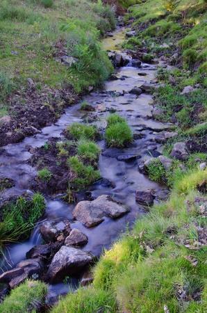 Stream in the mountain. Clea
