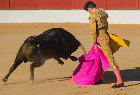 A bullfighter giving a pass to the bull with his cape. The matador confronts the bull with the capote