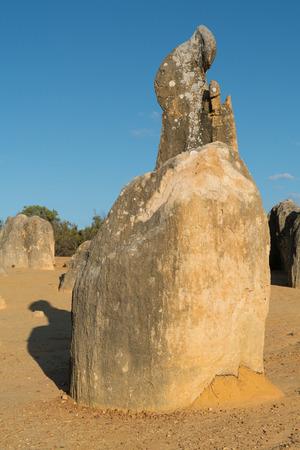 Pinnacles Desert in early morning light, Nambung National Park, Western Australia