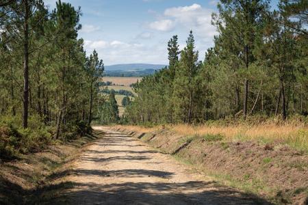 Panoramic landscape along the Camino de Santiago trail between Lugo and Melide, Galicia, Spain
