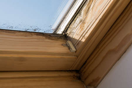 On roof windows mildew forms by inadequate ventilation