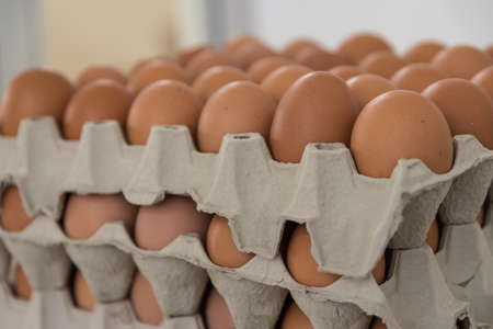 brown organic free range eggs in egg carton lined up