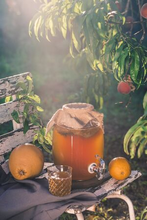 Foto de Kombucha tea drink with beneficial bacteria on wooden chair under Sunny evening light side view with copyspace - Imagen libre de derechos