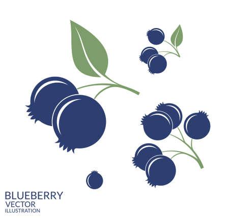 Illustration pour Blueberry. Set - image libre de droit