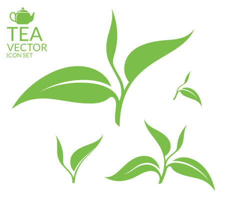 Tea. Isolated leaves on white background