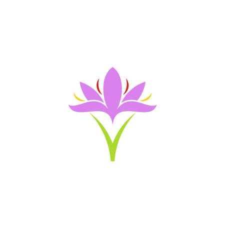 Illustration pour Crocus. Purple flower - image libre de droit
