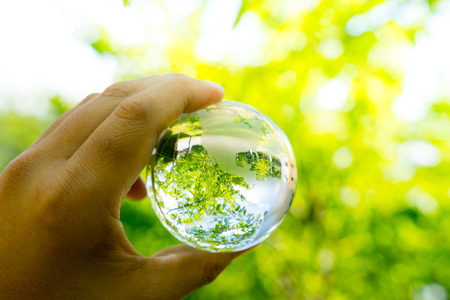 Green & Eco environment, glass globe in the garden