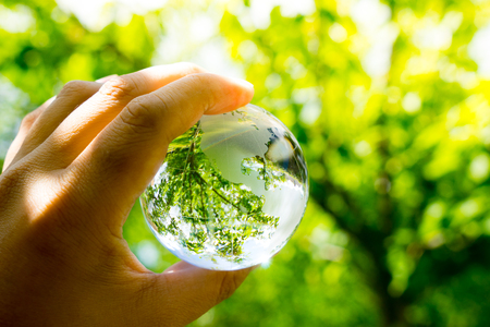 Photo pour Green & Eco environment, glass globe in the garden - image libre de droit