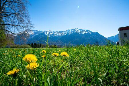 Photo pour Interlaken city and Jungfrau, Switzerland - image libre de droit