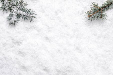 Photo pour Christmas white background with snow and christmas tree branch, flat lay, top view - image libre de droit
