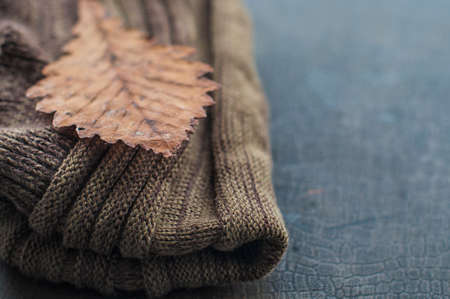 autumnal warm brown scarf and dry yellow leaf