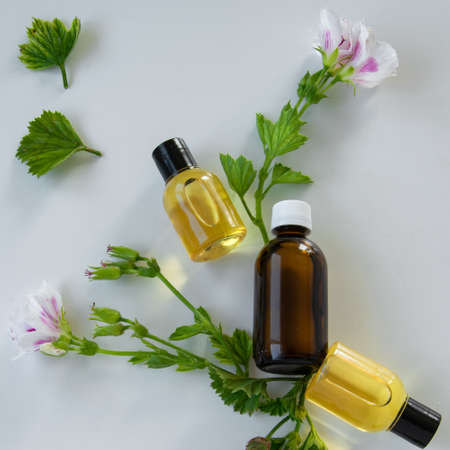 Photo pour Bottles with geranium essential oil. Herbal cosmetic treatment products - image libre de droit