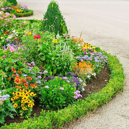 Photo for Flower beds and walkways in the city park. - Royalty Free Image