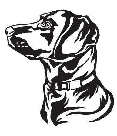Decorative outline portrait of Dog Labrador Retriever looking in profile, vector illustration in black color isolated on white background. Image for design and tattoo.