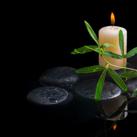 green tendril passionflower, candle and zen stones with drops in reflection water, closeup