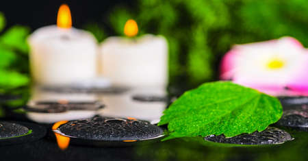 hibiscus leaf, plumeria flower, green branch and candles on zen stones in reflection water, shallow depth of field, panorama