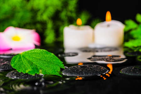 spa concept of hibiscus leaf, plumeria flower, green branch and candles on zen stones in ripple reflection water, shallow depth of field