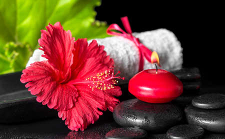 beautiful spa composition of red hibiscus flower with dew, candles, green leaf and rolled towel tied with ribbon on zen stones