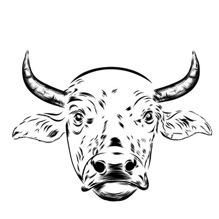 Black and white sketch of a asian cow's face portrait.