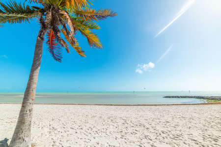 Photo for Smathers Beach on a sunny day. Key West, USA - Royalty Free Image