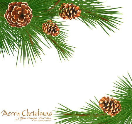 festive background with green spruce and pine cones