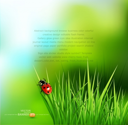 Illustration pour vector background with green grass and ladybug - image libre de droit