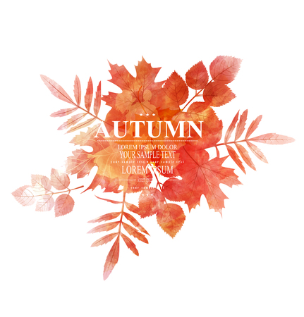 vector autumn, orange, leaves (imitation of watercolors)のイラスト素材