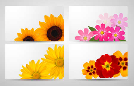 Set of banners with different colorful flower Vector illustration