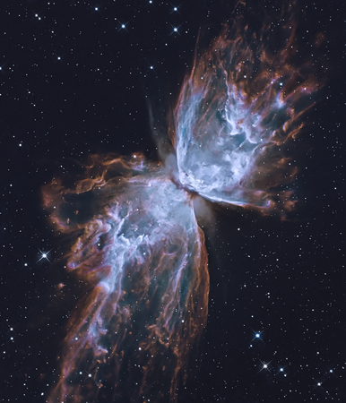 Photo for The Butterfly Nebula.  Retouched image. - Royalty Free Image