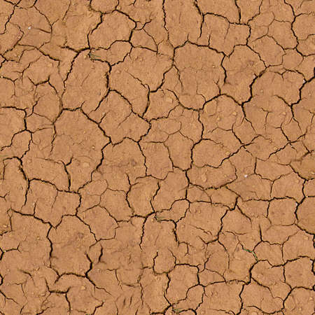 Cracked Earth Seamless Texture Tile