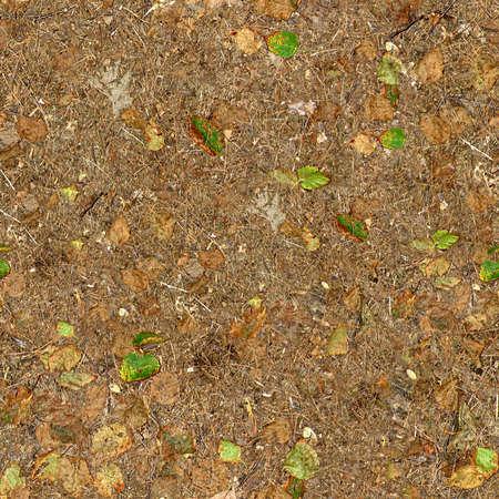 Photo pour Ground Cover Seamless Texture Tile - image libre de droit