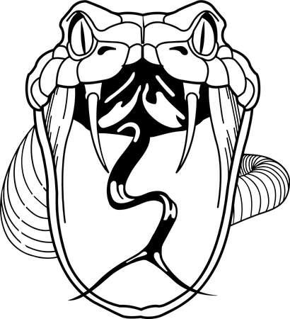 Rattlesnake Illustration.