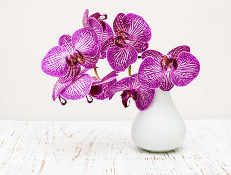purple orchid flowers in vase on a wooden table