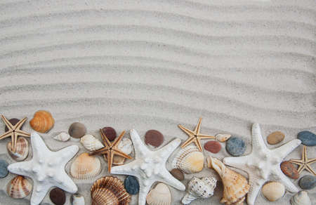 Summer background seashells and starfish border on sand